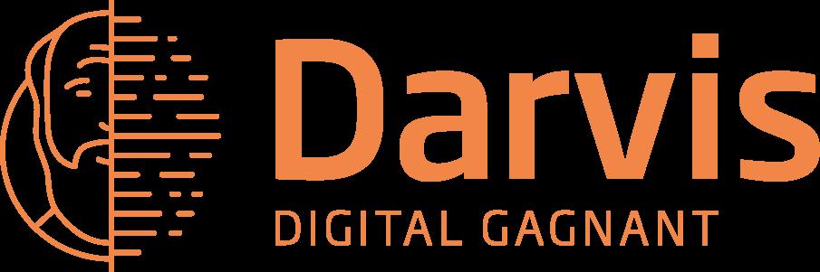 Darvis Cybersécurité Business intelligence DSI Cloud SQL Serveur